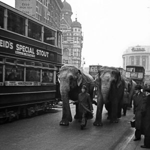 """The circus arrives in town, London, 1937"" by John Turner, Photographer."