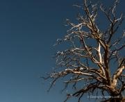 CanyonlandsNationalPark_1507_2291_700x700