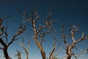 CanyonlandsNationalPark_1507_2292_700x700
