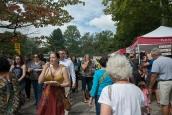 Arden Fair 2016