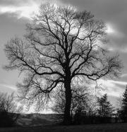 Warslow, England, April, 2018 by Danny N. Schweers
