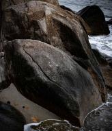 Allens Pond Wildlife Sanctuary, Dartmouth, Massachusetts by Mass Audubon