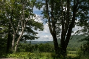 University of Vermont, Morgan Horse Farm, Weybridge