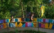 Arden Fair 2015